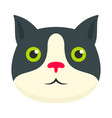 cute cat face icon flat style vector image vector image