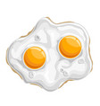 fried chicken egg vector image vector image