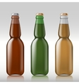 Glass beer bottle vector image vector image