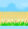 grass and flowers before the fence vector image