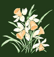 image bouquet spring narcissuses sketches vector image vector image