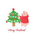 piglets decorating christmas tree isolated on vector image