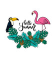 tropical summer with pink flamingo vector image