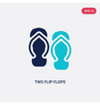 two color two flip flops icon from beauty concept vector image