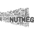 a brief history of nutmeg text word cloud concept vector image vector image