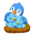 birds with her two babies in nest vector image