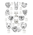 calendar with portraits of dogs vector image vector image