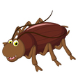 cockroach cartoon for you design vector image vector image