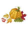 decorative element with pumpkin and maple leaves vector image