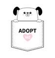 dog in pocket holding hands adopt me pink vector image vector image