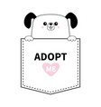 dog in the pocket holding hands adopt me pink vector image vector image