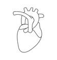 healthy heart organ human cardiology vector image