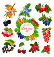 icons set of berries and wildberry fruits vector image vector image