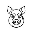 image of swine or pig head vector image vector image
