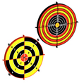 practical pistol shooting vector image vector image