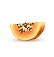 realistic 3d papaya pawpaw isolated closeup vector image vector image