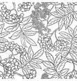 rowan seamless pattern vector image