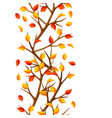autumn seamless pattern with branches of tree and vector image vector image