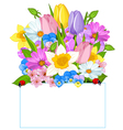 Colorful Fresh Spring Flowers vector image