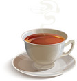Isolated realistic white tea cup with saucer vector image vector image