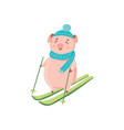 piglet in hat and scarf skiing isolated on white vector image vector image