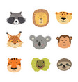 animal faces including vector image vector image