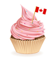 Canadian Cupcake vector image vector image