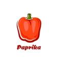 Fresh red bell pepper vegetable vector image