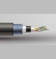 rector realistic of fiber optic tigh vector image