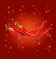 red hot chili pepper on a red background vector image vector image
