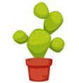 Cactus cartoon vector image