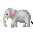 Cartoon African elephant isolated vector image vector image