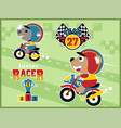 cartoon of motorcycle racing with funny animals vector image