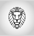 lion isolated on white background vector image vector image