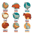 meat and poultry flat animal and birds vector image