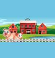 pig at rural farm vector image vector image
