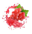 rose wine splash red or rose pink grape vector image vector image