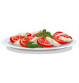salad with mozzarella vector image vector image