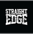 straight edge vector image vector image