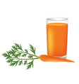 carrot juice with fresh carrot beside the glass vector image