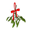 christmas mistletoe branches for your designs vector image