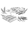 collection of natural elements of bread and flour vector image vector image
