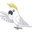 Cute white parrot presenting isolated vector image vector image