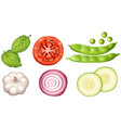 different types of vegetables on white background vector image vector image