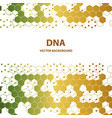 dna sequence shiny background science eps10 vector image vector image