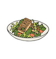 grilled halloumi salad vector image vector image