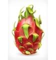 pitaya icon vector image