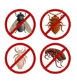 Set of disable signs with pest insects vector image vector image