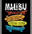 skateboard graphic for t-shirt print and other vector image vector image