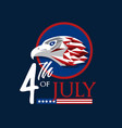 usa 4th july vector image